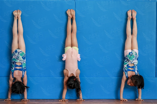 D Young Gymnasts
