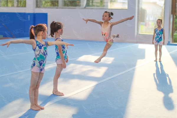 E Young Gymnasts